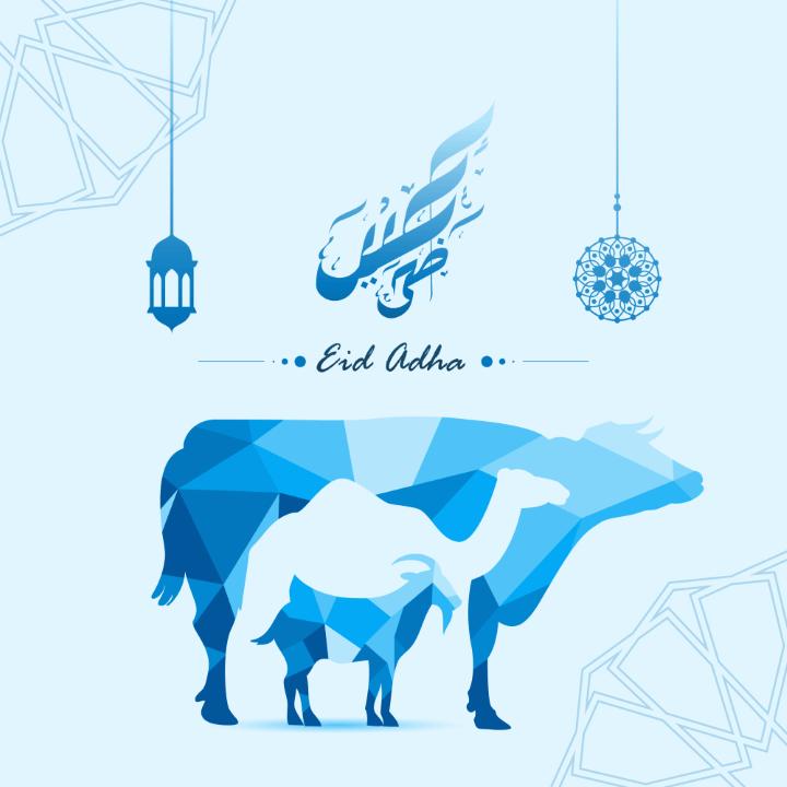 Eid al adha mubarak photo with animal