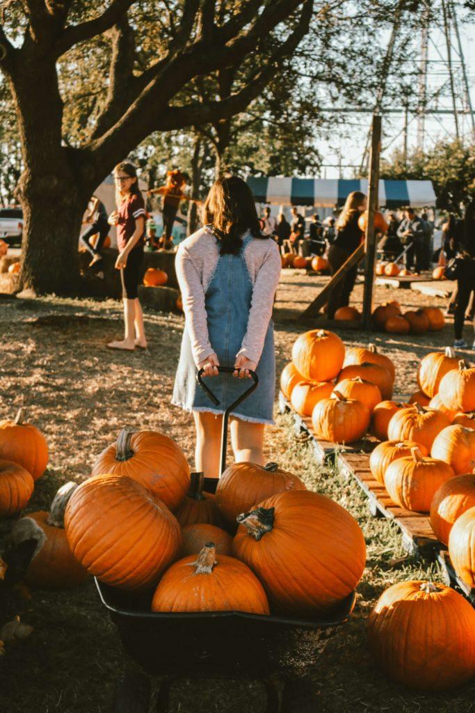 halloween pumpkin hut